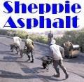 Sheppie Asphalt