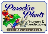 Paradise Plants and Landscaping
